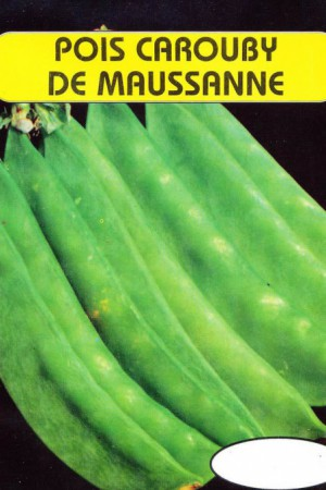 Semences potagères : Pois mangetout Carouby de Maussane