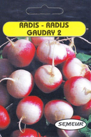 Semences potagères : Radis Gaudry