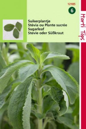 Semences potagères : Stevia Rebaudiana