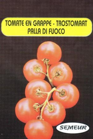 Semences potagères : Tomate Palla di Fuoco