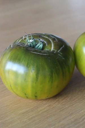 Semences potagères : Tomate Verte de Huy