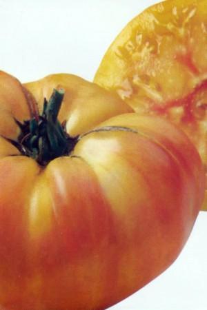 Semences potagères : Tomate Ananas