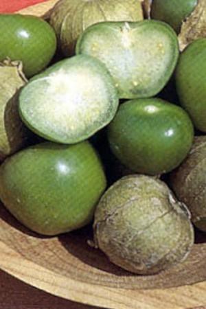 Semences potagères : Tomatillo Toma Verde
