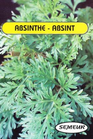 Semences condimentaires : Absinthe Absinthe