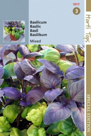 Semences condimentaires : Basilic En mélange