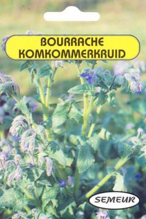 Semences condimentaires : Bourrache Bourrache