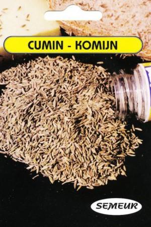 Semences condimentaires : Cumin Cumin