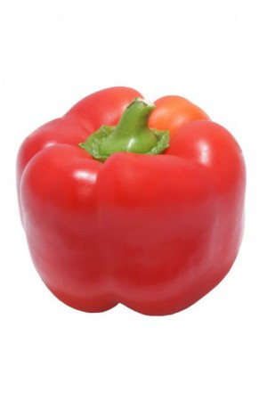 Semences condimentaires : Poivron Gros carré rouge