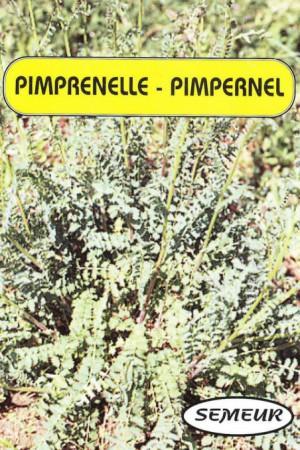 Semences condimentaires : Pimprenelle Petite pimprenelle