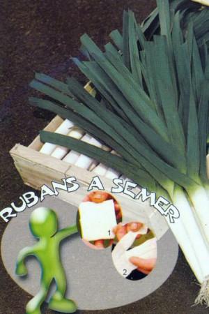 Rubans à semer : Poireau Armor