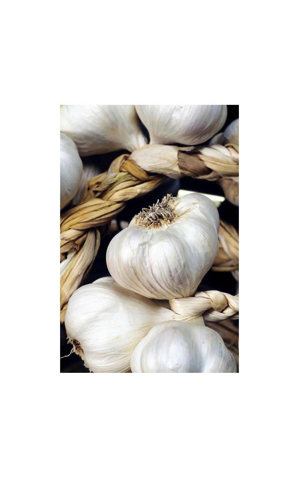 Ail - Echalote - Oignon : Ail Blanc 250 grammes : Hello Seeds