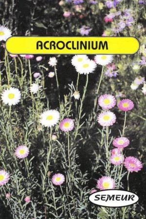 Semences de fleurs : Acrolinum A fleurs double