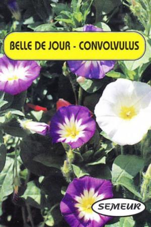 Semences de fleurs : Belle de jour A fleurs variées