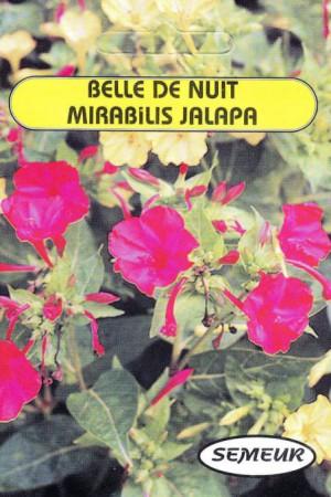 Semences de fleurs : Belle de nuit A fleurs variées