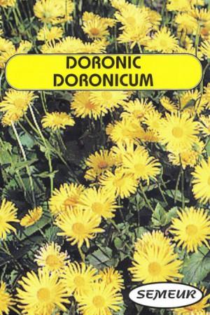 Semences de fleurs : Doronic Du Caucase