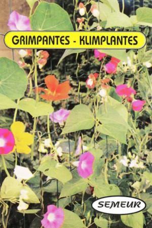 Semences de fleurs : Mélange de fleurs Fleurs grimpantes