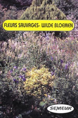Semences de fleurs : Mélange de fleurs Fleurs sauvages