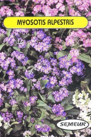 Semences de fleurs : Myosotis Des Alpes varié