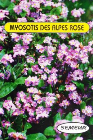 Semences de fleurs : Myosotis Des Alpes rose