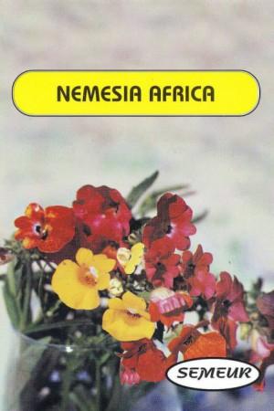 Semences de fleurs : Némésia Carnival