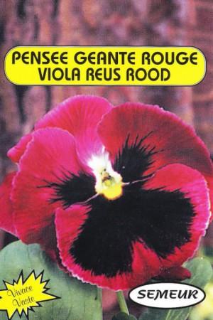 Semences de fleurs : Pensée Rouge avec macule noire