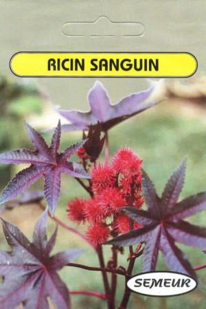 Semences de fleurs : Ricin Sanguin