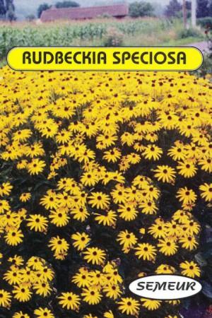 Semences de fleurs : Rudbeckia Bouquet d'or