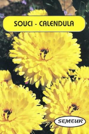 Semences de fleurs : Souci Jaune double