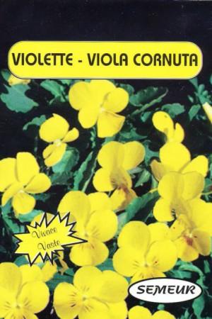 Semences de fleurs : Violette Jaune
