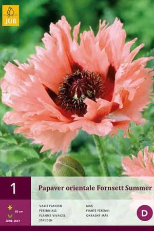 Bulbes à fleurs plantation printemps : Coquelicot oriental Rose