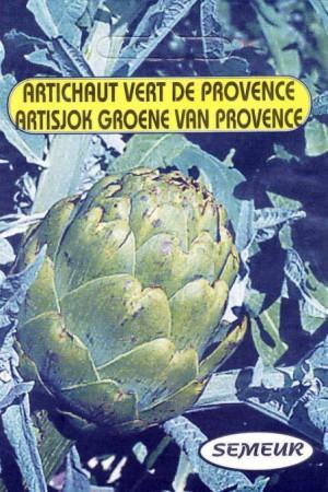 Semences potagères : Artichaut Vert de Provence