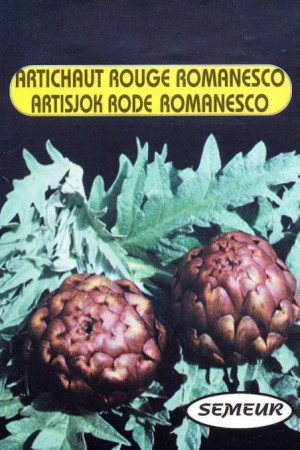 Semences potagères : Artichaut Rouge Romanesco
