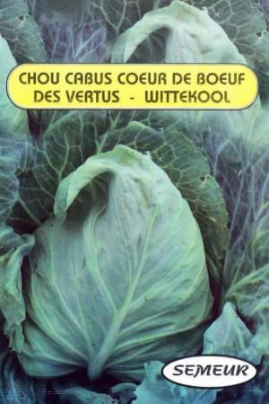 Semences potagères : Chou pointu Cœur de bœuf