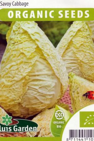 Semences potagères : Chou de Milan Bloemendaalse gele BIO