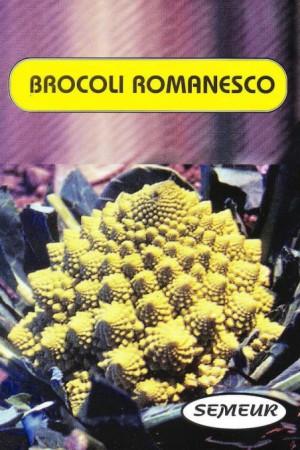 Semences potagères : Chou fleur Romanesco