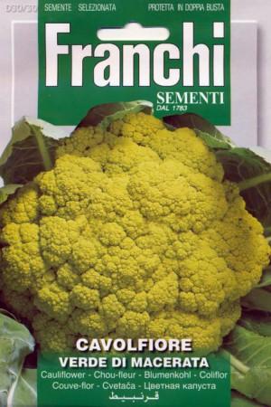 Semences potagères : Chou fleur Verde di Macerata