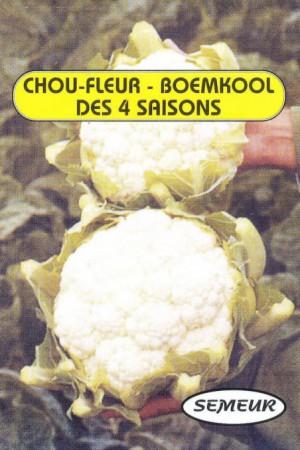 Semences potagères : Chou fleur des quatre saisons
