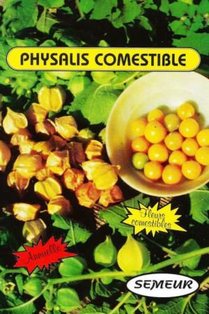 Semences potagères : Coqueret du Perou Physalis edulis