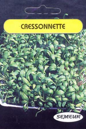 Semences potagères : Cresson Cressonnette