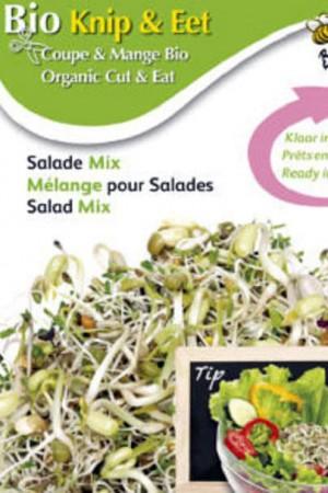 Semences potagères : Graines à germer Mélange variété