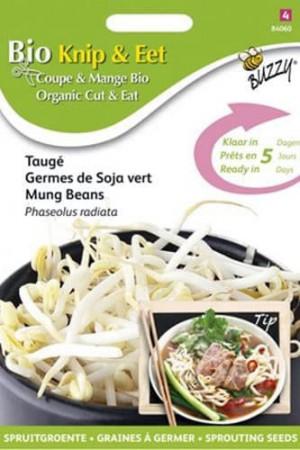 Semences potagères : Graines à germer Soja vert Taugé BIO