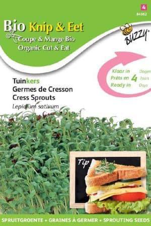 Semences potagères : Graines à germer Cresson  BIO