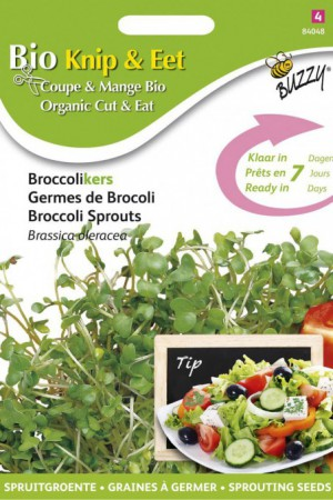 Semences potagères : Graines à germer Brocoli BIO