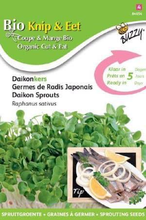 Semences potagères : Graines à germer Radis Daïkon BIO