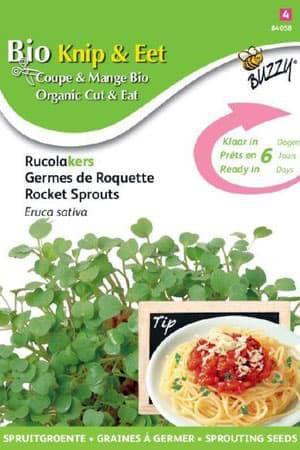Semences potagères : Graines à germer Roquette BIO