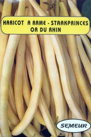 Semences potagères : Haricot à rames Or du Rhin