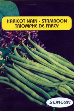Semences potagères : Haricot nain vert mangetout Triomphe de Farcy