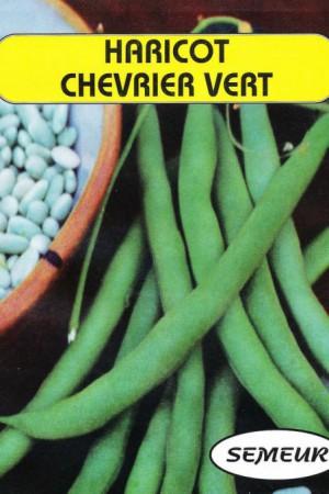 Semences potagères : Haricot nain à parchemin Chevrier vert