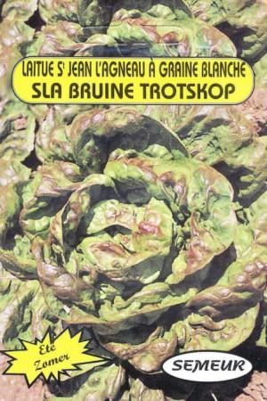 Semences potagères : Laitue pommée de pleine terre Saint Jean l'Agneau
