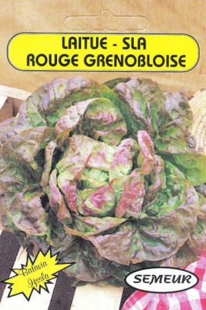 Semences potagères : Laitue pommée de pleine terre Batavia Rouge Grenobloise
